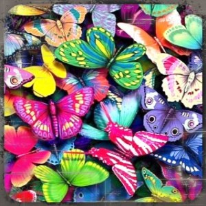 Inspirations colored_butterflies